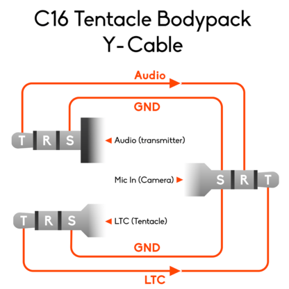 Wiring of Tentacle Bodypack Y-cable